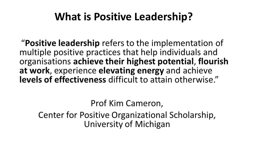 What is Positive Leadership